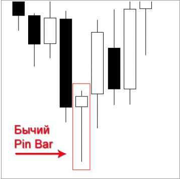 Pin-bar1